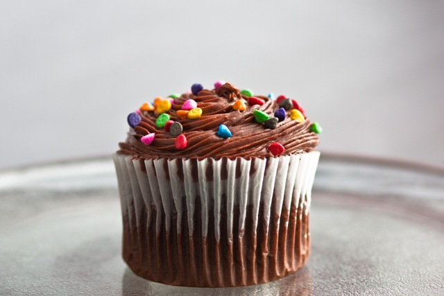 Chocolate Cupcake and Sprinkles